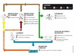 Schéma sur le biogaz, travail pour Initiative Développement